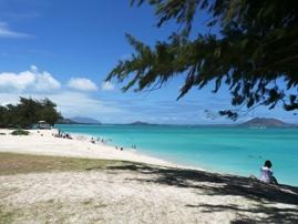 Kailua Sailboards & Kayaks